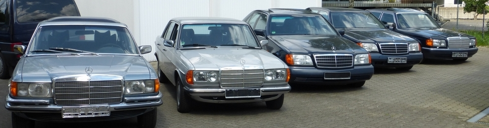 5x Mercedes Young- bzw. Oldtimer